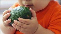 Is een plantaardig dieet slecht voor een kind? Als veganistische ouder heb je misschien het gevoel dat je altijd jezelf moet verdedigen. Er worden voorbeelden aangehaald van kinderen waarbij het mis ging. Helaas zijn die er, maar het aantal kinderen die in blakende gezondheid opgroeien puur op plantaardige voeding is gelukkig vele malen groter.