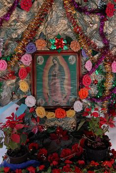 my grandmother had several Mary shrines :) <3