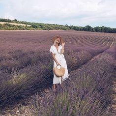 Lavender fields forever 💜 Provence, France