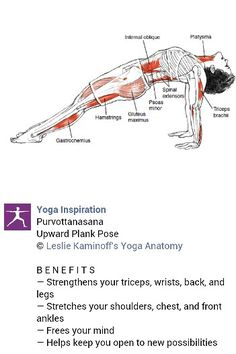 Yoga inspiration strengthen body | Loved and pinned by www.downdogboutique.com