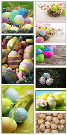 huevos pascua Bunny Party, Food Decoration, Egg Hunt, Hens, Holidays And Events, Spring Time, Easter Eggs, Party Time, Arts And Crafts