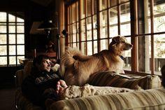 Cottage Window Patrol by kylieslarson on Flickr.