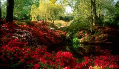 Best Gardens to visit near London | Culture Whisper