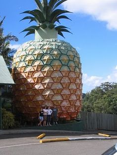 The Big Pineapple, Nambour, Queensland, Australia, opened in 1971 Big Pineapple, Pineapple Growing, Orange Beach Alabama, Moving Overseas, Roadside Attractions, Road Trippin, World's Biggest, Worlds Largest, Stuff To Do
