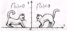 ¿Cóncava o convexa? | Matemolivares