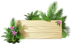 Exotic Board PNG Clipart