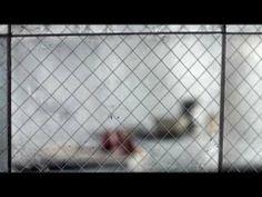 ▶ ANN SACKS Versailles Mesh - YouTube