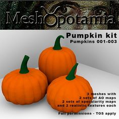 Kit with three different pumpkins with two texture faces each. Each pumpkin has two sets of AO maps and two sets of realistic textures and specula.