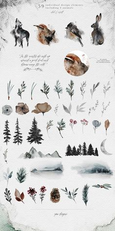 Frostbound - Winter Wonderings Set by OpiaDesigns on @creativemarket