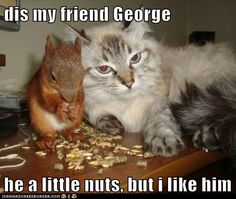 dis my friend George  he a little nuts, but i like him