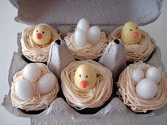 Egg and chicken cupcakes