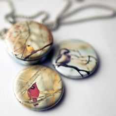 Cardinal, goldfinch and chickadee.  3 in 1 magnetic locket to celebrate Earth Day.