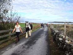 Chill out and enjoy the quiet roads, secluded beaches and stunning scenery with Connemara Equestrian Escapes Riding Holiday, Ireland Holiday, Secluded Beach, Connemara, Horse Riding, Horseback Riding, Roads, Equestrian, Beaches