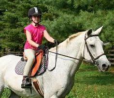 Beaucoup de personne croit que chaque petite fille aime les chevaux pour au moins un moment dans sa vie. Je pense que cette énoncé est vrai.