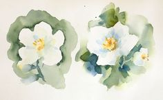 You're bound to make a few mistakes as you learn watercolor painting, but you can also learn how to avoid the most common mishaps.