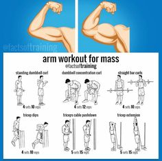 Arm Workout to Build Muscle Mass  | Posted By: NewHowToLoseBellyFat.com