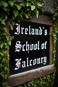 Explore the incredible Ashford Estate, and Irelands School of Falconry.  Ashford Castle.   www.ashfordcastle.com