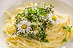 Anregung für meine Wildkräuter - Kücheküche! www.spreewald-kraeutermanufaktur.de  Pasta Wildkräuter3