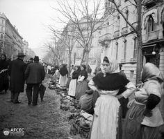 htts://flic.kr/p/gKTg7X | La fira dels galls a la Rambla Catalunya, Barcelona, 1914. Autor: Carles Fargas i Bonell (AFCEC_FARGAS_X_00249)