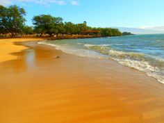 """Photo of Hawaii from Rachel N. """"Spencer Beach on the BIG ISLAND in Hawaii. My favorite beach! The sand was really golden as seen in the picture. The water was so warm; because of the lava tubes that flowed from the mountain behind"""""""