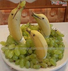 Funny Fruit designed foods. Accessorizing is very important for Your Personal Brand! Island Heat Products www.islandheat.com today's clothing Fashions and Home Goods with Great Family Gift Idea's. Shop Island Heat on eBay and Bonanza for Great Deals and same day shipping!