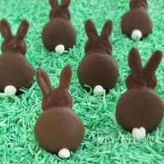 Chocolate Bunny Silhouettes made using Vanilla Wafer Cookies - OMG!!!!   This is so simple...making them for sure!!!