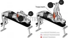 Learn how to isolate your triceps brachii with the decline EZ bar skull crusher, a popular variation of the lying triceps extension. Best Shoulder Workout, Best Chest Workout, Ab Workout Men, Workout For Flat Stomach, Triceps Workout, Chest Workouts, Skull Crusher Exercise, Good Back Workouts, Workout Session