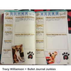 Another great idea for a pet spread in my bujo!