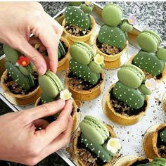 Have any green macarons on hand? Try out these adorable cacti macaron tarts by… Cake Cookies, Cupcake Cakes, Macaron Cake, Cup Cakes, Oreo Macarons, Green Tea Macarons, Macaroon Cookies, Cupcake Toppers, Cute Food