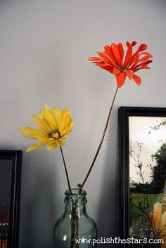 Preserve flowers with borax tutorial.
