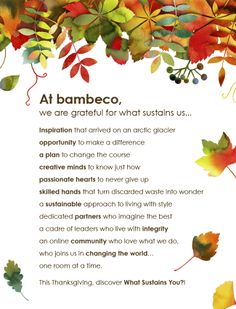 Happy Thanksgiving from bambeco!