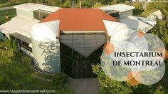 vista aerea del edificio del insectarium de montreal