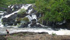 Príroda žije v Suriname