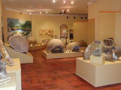 Loberia, cuna de la Arqueología Pampeana
