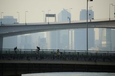 Tokyo Metropolitan Expressway, Route 11 Daiba Line (首都高速道路11号台場線)