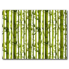 Bamboo Lessons Postcards