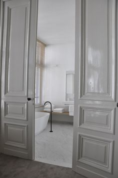 Gray glossy doors