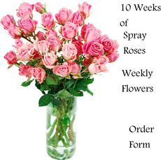discount flowers toledo ohio