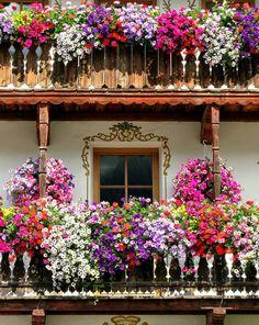 Por Mireya Pérez en http://magentaig.com/wNews/news/view/104/asi-soy-yo