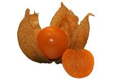 Machovky - Plody machovky