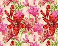 Floral & Jewel Seamless Patterns