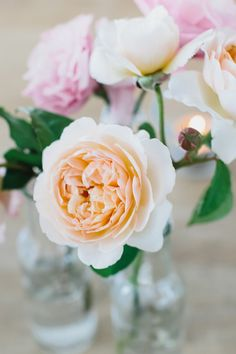 pretty pastels // photos by Erin + Tara Photography // floral design by Cecilia Fox