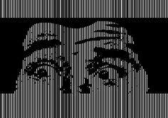 El kinegrama es una característica desarrollada por la compañía suiza Kinegram y, como el holograma, consiste en una estructura de difracción microscópica. La imagen, no obstante, no es tridimensional, como en el holograma, sino que al moverla muestra animaciones gráficas