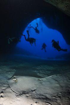 Mergulho Caverna da Sapata, Fernando de Noronha, Brasil... #Me #Padi #stingray