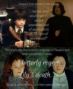 still don't like Snape because In the sixth book I found out that Snape is still a death eater and Voldemort has sent him to Hogwarts as his spy. Dumbledore has no vlue Harry Potter World, Mundo Harry Potter, Harry Potter Puns, Harry Potter Characters, Harry Potter Universal, Facts About Harry Potter, Always Harry Potter Tattoo, Harry Potter Sweets, Harry Potter Bookmark