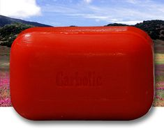 Carbolic Soap ETA:  It's apparently what mechanics use to get the grease out from under their nails....ALSO helps to keep away mosquitoes and other bugs away!