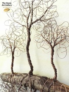 Wire Art: 'Three Trees' - Copper Wire on driftwood. Facebook: The Stone Art Gallery www.thestoneartgallery.com Picture Wire, Pebble Pictures, Wire Trees, Tree Leaves, Wire Crafts, Wire Art, Stone Art, Tree Of Life, Resin Jewelry