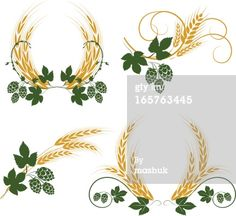 Homebrewing logo Hop and barley : Vector Art Wheat Tattoo, Hop Tattoo, Beer Hops, Brewery Design, Cross Tattoo For Men, Christmas Embroidery, Barn Quilts, Free Illustrations, Free Vector Art