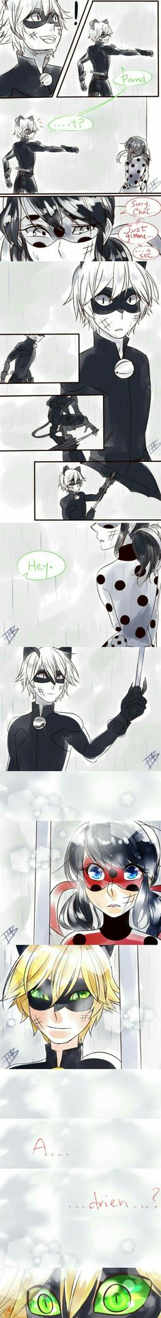 Miraculous ladybag x Chat noir/ The feels... <3/// This would be my favorite.