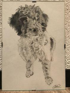 Hunde Porträt Dogs, Animals, Art, Draw, Photo Illustration, Art Background, Animales, Animaux, Kunst